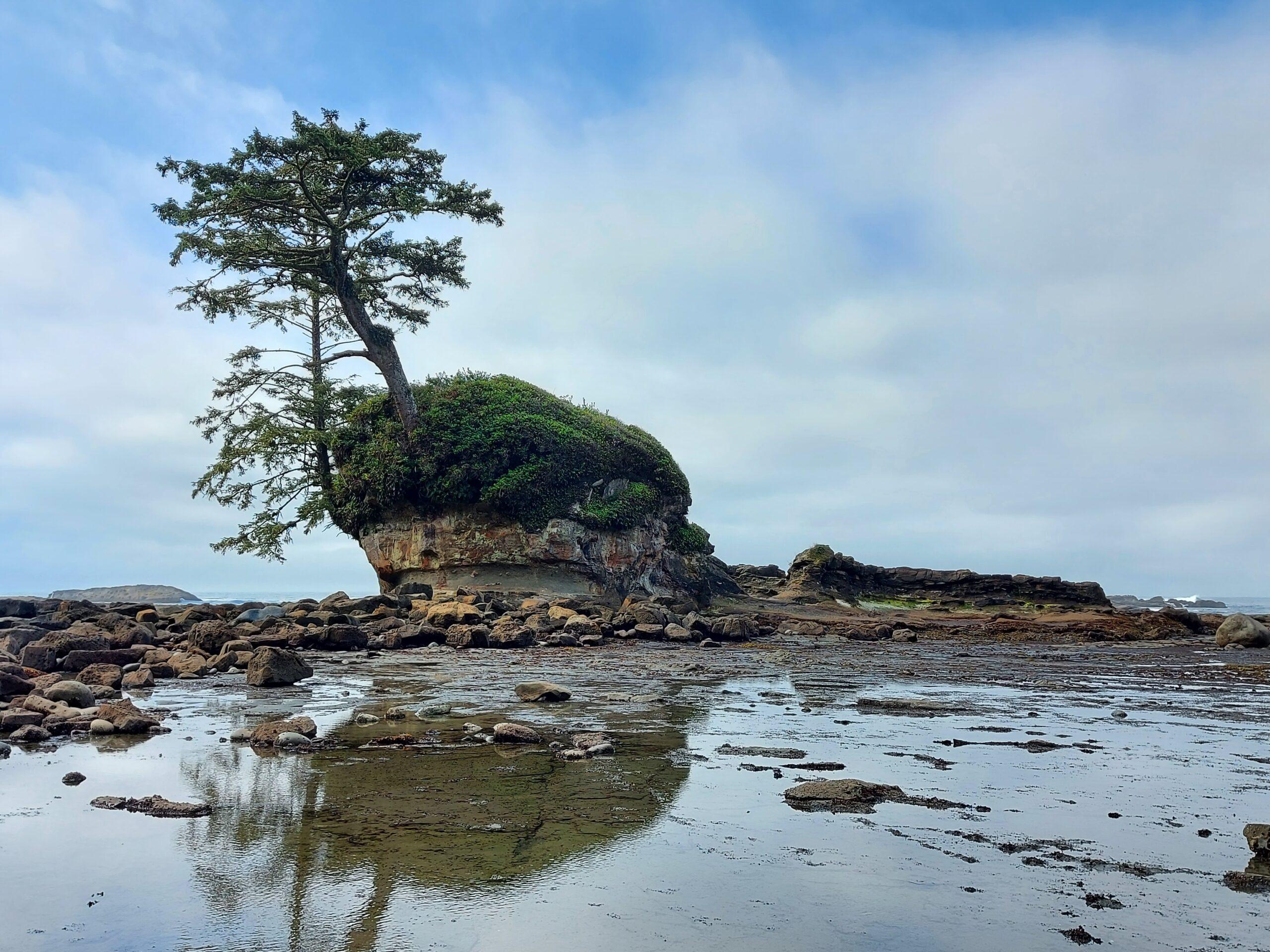 The hike of a lifetime … West Coast Trail (WCT)